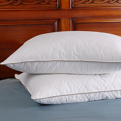 Set of 2, Soft Down and Feather Pillow, Double Layered