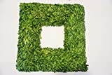 Preserved Boxwood Square Wreath 22 in. Tradingsmith