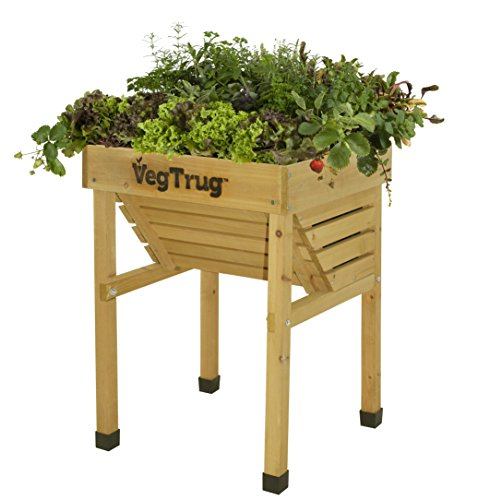 Vegtrug VTKIDN0460 USA Kids Planter