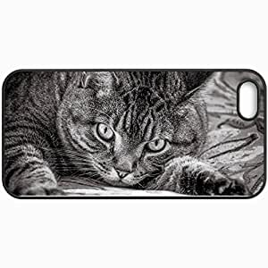 Personalized Protective Hardshell Back Hardcover For iPhone 5/5S, Cat Design In Black Case Color