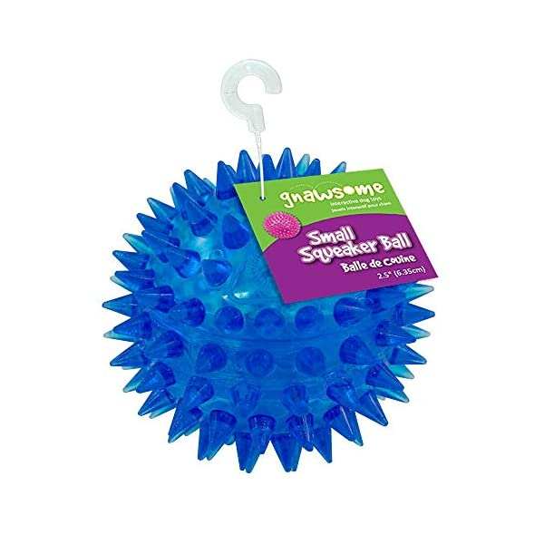 Gnawsome 2.5″ Spiky Squeaker Ball Dog Toy – Small, Cleans teeth and Promotes Dental and Gum Health for Your Pet, Colors will vary