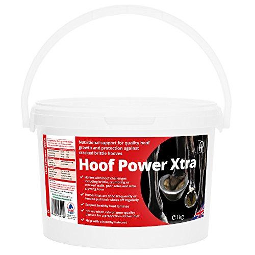 Pegasus Health Hoof Power Xtra 1 kg by SportsCenter