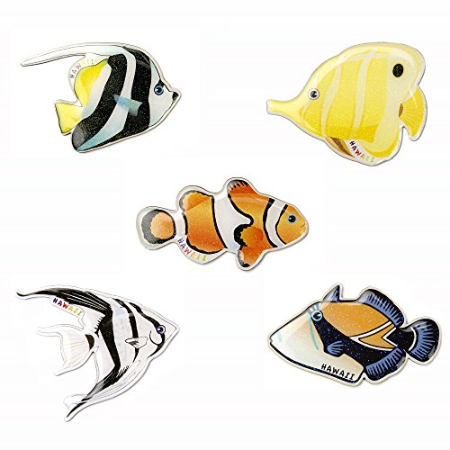 Refrigerator Magnets Fridge Magnets Funny Magnets for Refrigerator Office Cabinets Whiteboards,Decorative Magnets Photo Magnets (Pack of 5 Colorful - Fridge Refrigerator Magnet Fish