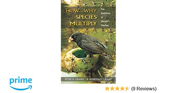 Amazon how and why species multiply the radiation of darwins amazon how and why species multiply the radiation of darwins finches princeton series in evolutionary biology 9780691149998 peter r grant fandeluxe Image collections