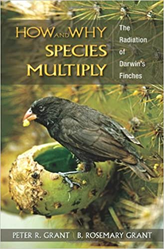 Amazon how and why species multiply the radiation of darwins how and why species multiply the radiation of darwins finches princeton series in evolutionary biology fandeluxe Image collections