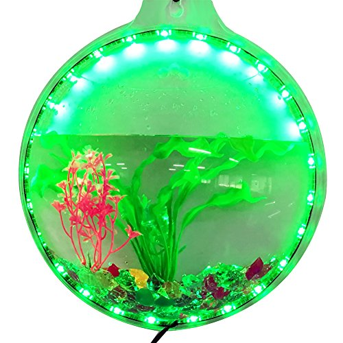 Wall Mounted Fish Bowl Acrylic Wall Fish Tank With Color Change Led