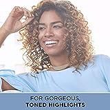 Clairol Professional Kaleidoscopes Hair Lightener