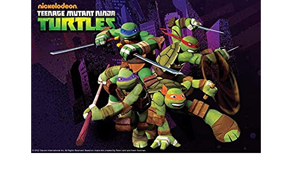 Teenage Mutant Ninja Turtles Donatello Michaelangelo ...