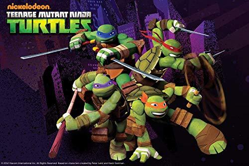 Teenage Mutant Ninja Turtles Donatello Michaelangelo Leonardo Raphael TMNT Swords Nun-chucks Edible Cake Topper Image ABPID06421 - 1/4 sheet -