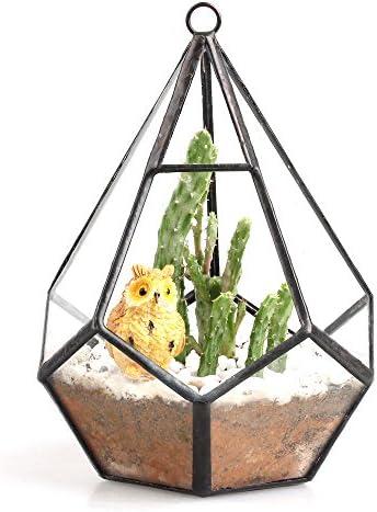 NCYP 5.3 inches Hanging Glass Terrarium Modern Artistic Wall Tears Shape Diamond Geometric Polyhedron Air Plant Holder Desk Planter DIY Centerpiece Vase Succulent Flower Pot Plants not Included
