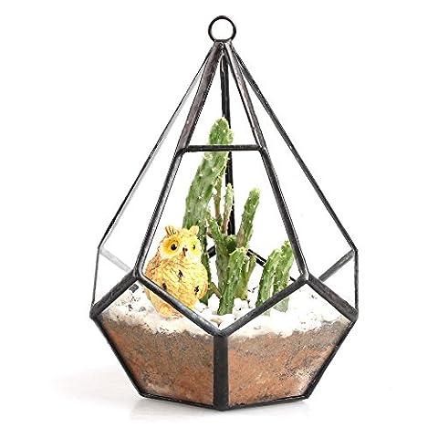 Modern Artistic Wall Hanging Tears Shape Diamond Glass Geometric Polyhedron Terrarium Hanging Air Plant Holder Desk Planter Diy Centerpiece Vase Succulent Flower Pot (Plants not included) 5.3 inches - Hanging Flower Vase
