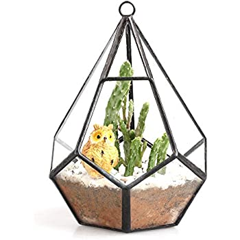 Modern Artistic Wall Hanging Tears Shape Diamond Glass Geometric Polyhedron Terrarium Hanging Air Plant Holder Desk Planter Diy Centerpiece Vase Succulent Flower Pot (Plants not included) 5.3 inches
