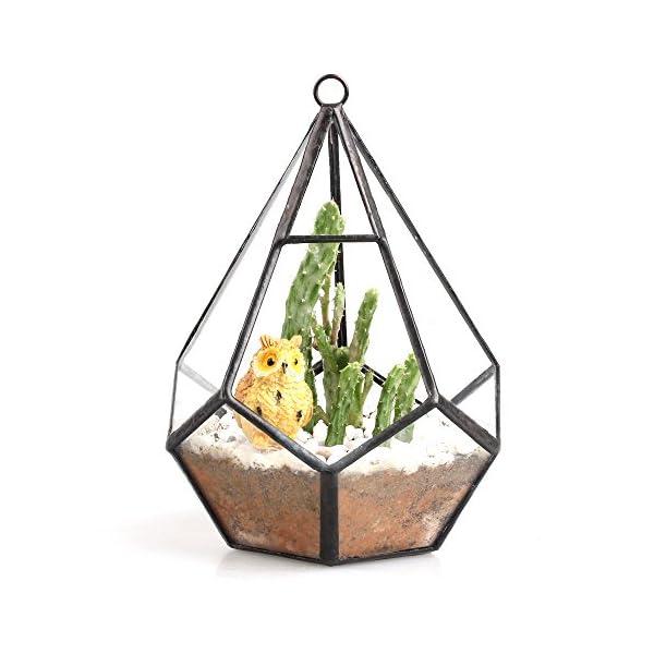 NCYP-53-inches-Hanging-Glass-Terrarium-Modern-Artistic-Wall-Tears-Shape-Diamond-Geometric-Polyhedron-Air-Plant-Holder-Desk-Planter-DIY-Centerpiece-Vase-Succulent-Flower-Pot-Plants-not-Included