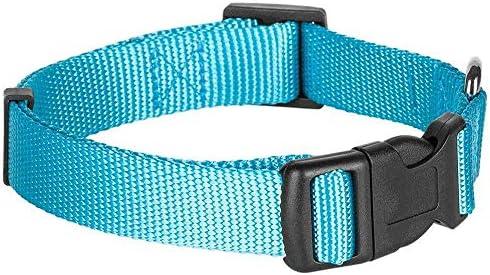 Blueberry Pet Collier Chien Classique Solide 2,5cm Grand Modèle L Polyester Nylon, Conçu pour Durer. Turquoise Laisse et Harnais Assortis Vendus séparément