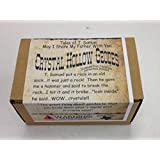 Crack Your Own Crystal Hollow Geodes - 10 Pack