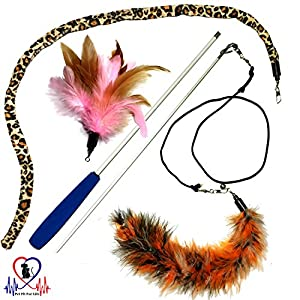 Pet Fit For Life 3 Piece Dual Rod Feather Teaser and Exerciser with a Slithering Snake for Cat and Kitten - Cat Toy Interactive Cat Wand by Equipt4 LLC