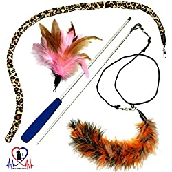 Pet Fit For Life 3 Piece Dual Rod Feather Teaser and Exerciser with a Slithering Snake for Cat and Kitten - Cat Toy Interactive Cat Wand