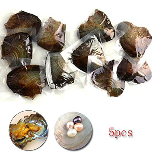 boyon-5pcs-freshwater-aquaculture-small-mussels-surprise-to-explore-oyster-oval-pearls