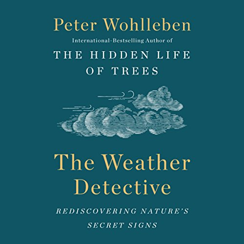 The Weather Detective by Penguin Audio