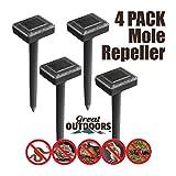 Best Mole Repellents - GREAT OUTDOORS TM Sonic Mole Repellent, Deterrent Rodent Review