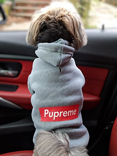 Pupreme Box Logo Dog Hoodie (Medium) for Toy Sized Dogs/Pups