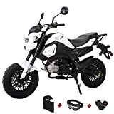 X-PRO 125cc Vader Adult Motorcycle Gas Motorcycle