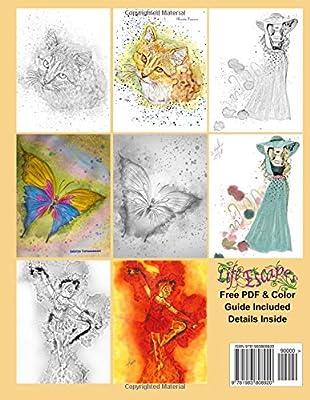 Amazon Com Adult Coloring Books Splashy Art 44 Grayscale Splashy