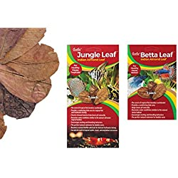 CaribSea Betta Indian Almond Leaf - 9 Total (3 Packages with 3 leafs per Package)
