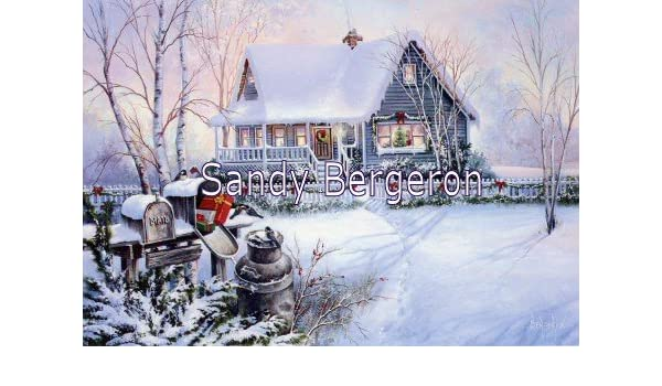 Bergeron Christmas Cards.Amazon Com Sandy Bergeron Yuletide Christmas Boxed