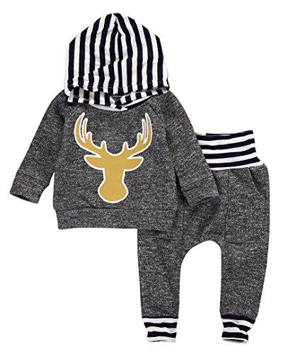 Toddler Infant Baby Boys Dinosaur Long Sleeve Hoodie Tops Sweatsuit Pants Outfit Set (18-24 Months, Reindeer)