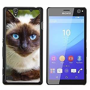 LECELL--Funda protectora / Cubierta / Piel For Sony Xperia C4 -- Siamese Cat Blue Eyes felina tailandesa --