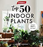Yates Top 50 Indoor Plants And How Not To Kill