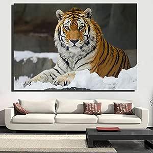 Quadro Senza corniceHD Tigre soggiorno murale realistico animale Tigre sdraiato Nella Neve Tigre Poster Foto 60X90cm: Amazon.es: Hogar