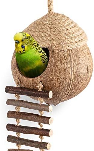 andwe-coconut-bird-nest-hut-with
