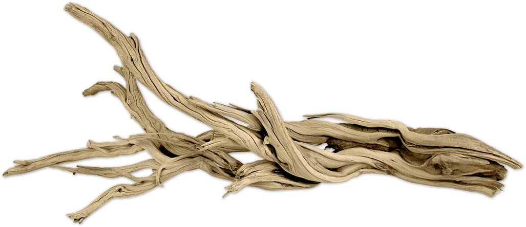 Koyal Wholesale California Driftwood with Natural Brown Branches, 12-Inch