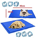 EatingBiting(R) 40x30cm Pet Cooling Mat Soft Pet Chilly Gel Mat Folding Self Cooling Pet Bed for Keep Dogs Cats Cooling Mat Summer Pet Cool USE for Floors Couches Car Seats Pet Beds Kennels