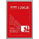 Gloway FER 120GB Solid State Drive,3D NANAD SATA 2.5 Inch Internal SSD Work with Notebook and Desktop(120GB)