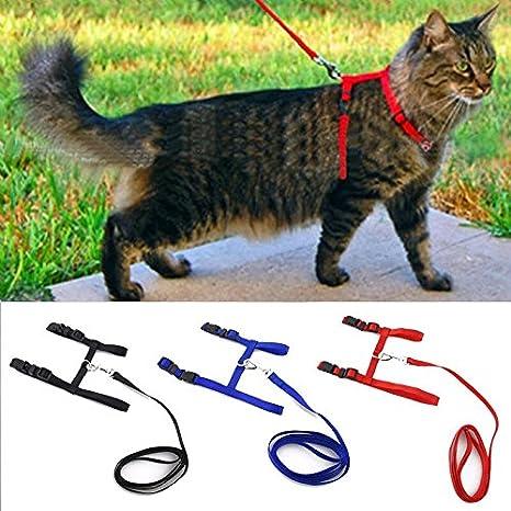 HAOKAN Collar De Mascota Collar De Perro De Gato Arnés Y Correa De Nylon Ajustable para