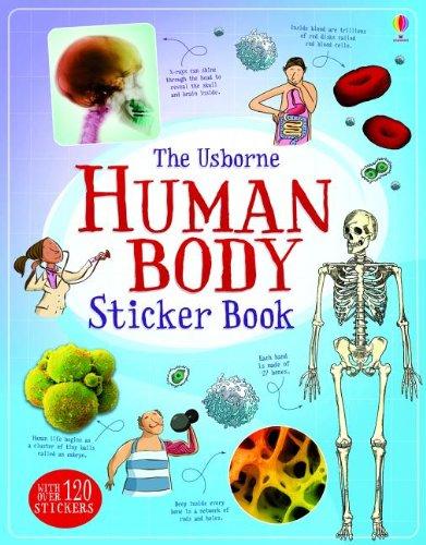 Human Body Sticker Book (Science Sticker Books)