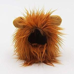 CHENG Peluca de Gato de Melena de león, Disfraz para Gato, Disfraz de Halloween