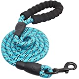 WTO Pet Leash - Strong Dog Leash with Comfortable Padded Handle and Highly Reflective Threads Dog Leashes for Medium and Large Dogs (Blue)