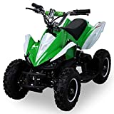 Mini Elektro Kinder Racer 800 Watt ATV Pocket Quad Kinderquad Kinderfahrzeug grün