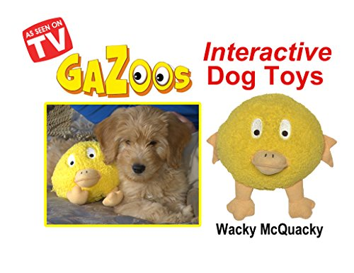 Wacky Cat Ball (Gazoos Interactive Dog Toy - Wacky McQuacky)