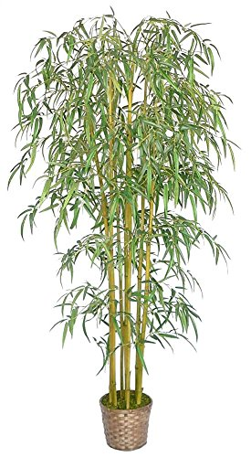 Tabletop Silk Tree Bamboo - Laura Ashley 6 Foot Tall Realistic Silk Bamboo Tree with Wicker Basket Planter