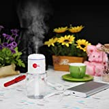 ABSL Portable Humidifier with USB for mist moisturizing car, office, desk, room, travel (White)