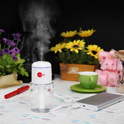 ABSL Portable Humidifier with USB for mist moisturizing car, office, desk, room, travel (White) by ABSL