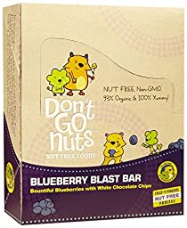 Don\'t Go Nuts Snack Bars - Blueberry Blast - 1.58 OZ - 12 ct