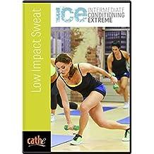 Cathe Friedrich's ICE Low Impact Sweat