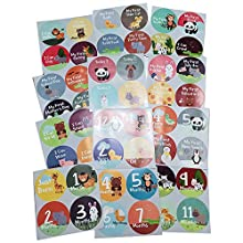 Massive Pack of 48 Baby Stickers, Baby Monthly Stickers, Popular Milestones Baby Stickers, Record Your Baby's Growth, Holidays and Special Firsts, Unique Baby Gifts- Jungle Theme (48 Pack Stickers)