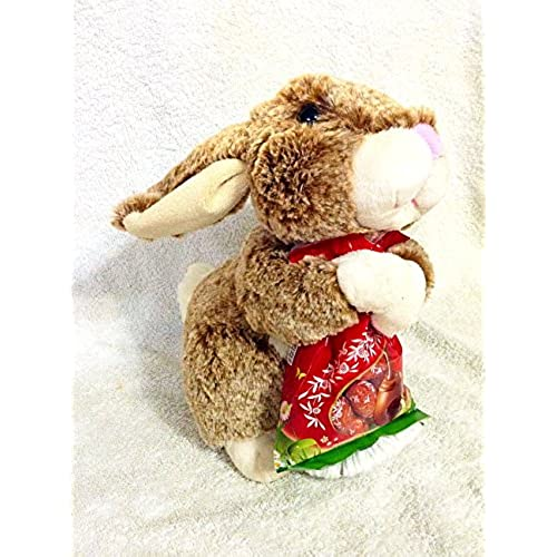Easter gifts amazon easter gift high quality 11 inch super soft bunny with delicious lindt lindor chocolate easter eggs bag negle Images